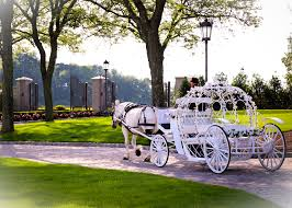 dream horse carriage company home of the cinderella princess
