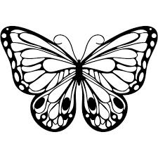 romantic butterfly jpg 1000 1000 drawings tekeningen pinterest