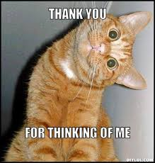 Thinking Cat Meme - thank you cat meme generator thank you for thinking of me c29daa