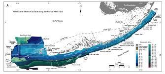 Florida Elevation Map by Sofia Regional Quaternary Submarine Geomorphology Methods
