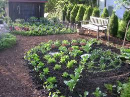 ideas for edging flower beds buythebutchercover com