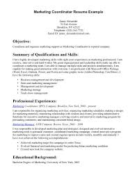 examples of resume marketing objectives cna objective coordinator