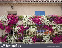 architectural details balcony with flowers stock picture