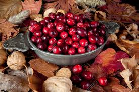 thanksgiving still with cranberries autumn leaves and nuts