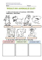 english worksheets what do animals eat