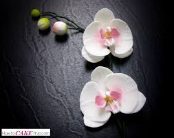 moth orchid sugar orchid tutorial how to cake that