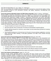 Cio Resume Samples by Crafty Inspiration Ideas Executive Summary Resume 13 Cio