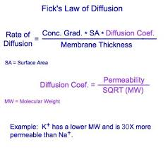 ficks law of diffusion pictures