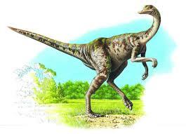 ornithomimus q files encyclopedia