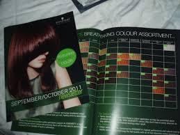 essensity hair color chart om hair