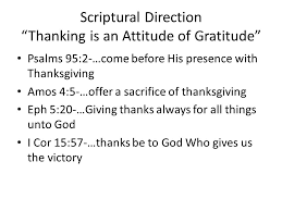 focus on the family iii being thankful for our families ppt