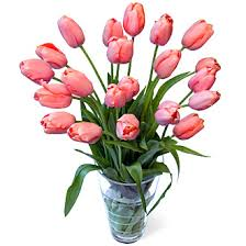 wedding flowers tulips order flowers online fresh cut tulips delivered
