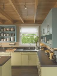 kitchen awesome kitchen cabinet cleaner decorating ideas