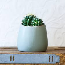 hubsch asymmetrical mini plant pot matt small plants ceramic