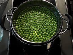 cuisiner les petit pois frais cuire des petits pois frais qooq