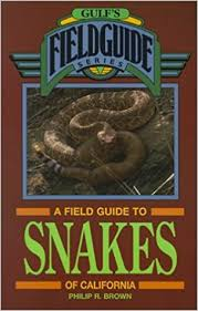 english pattern snake guides a field guide to snakes of california gulf s field guide philip