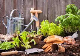 Indoor Garden Supplies - gardening products in sacramento ca indoor sun hydro