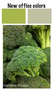 color recipes cooking up color schemes for your home page 2