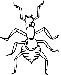 impressive insects coloring pages cool book ga 7489 unknown