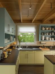 Painting The Inside Of Kitchen Cabinets Painted Kitchen Cabinet Ideas Freshome