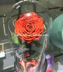 list manufacturers of rose dome glass buy rose dome glass get