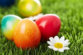 dye for easter eggs how to naturally dye easter eggs