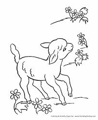 farm animal coloring pages printable lamb sheep coloring