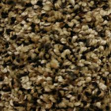 Home Decorators Carpet Shop Stainmaster Essentials Summer Freedom Pass Textured Interior