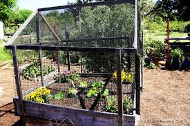 square foot garden design ideas