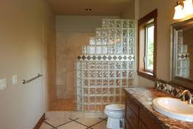 Small Bathroom With Walk In Shower Walk In Shower For Small Bathroom Brilliant Small Bathroom With