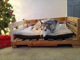 How To Make A Platform Bed Frame With Pallets by 8 Diy Pallet Beds For Dogs U2013 Iheartdogs Com