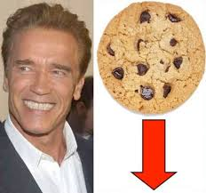 Arnold Meme - put that cookie down know your meme