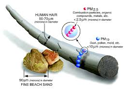 particulate matter pm basics particulate matter pm pollution