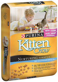 bench field pet foods llc home cat dry food purina kitten chow dry cat food cutekitten