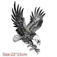 the 25 best eagle tattoos ideas on pinterest eagle drawing