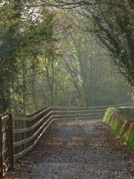 drakes trail in autumnal splendour my 25th trip johnie u0027s