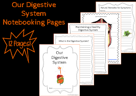 our precious sprouts u0027 homeschool journal free digestive system
