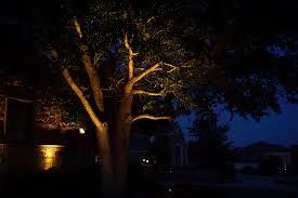 Tree Lights Landscape Net Lights For Trees Beautiful Net Lights For Trees With Net