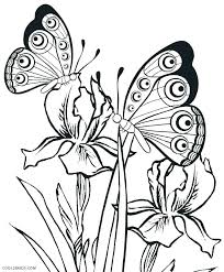 detailed butterfly coloring pages for adults butterfly coloring page printable pages for kids life cycle