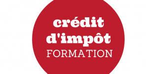 Credit Impot Pour Formation Dirigeant Financer Sa Formation Avec Le Cr礬dit D Imp禊t Formation Ifemdr