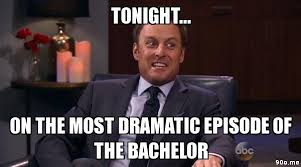 The Bachelor Memes - memes 90dev com