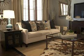 Brown Color Scheme Living Room Living Room Turquoise And Brown Living Room Ideas Spectacular