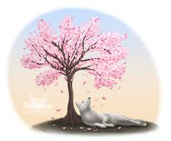 cherry blossom tree concept by moonywings on deviantart
