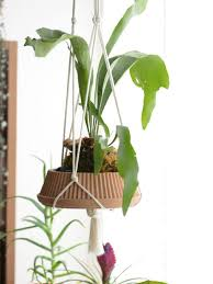 Diy Hanging Planters by 12 Diy Hanging Planters To Make Apartment Therapy