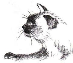 how to draw a siamese cat profile feltmagnet