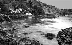 free photo black and white landscape sea free image on