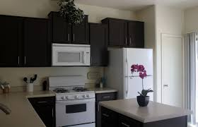 cabinet paint cabinets white very painting kitchen cabinet doors cabinet paint cabinets white wonderful painting kitchen cabinets black ideas wonderful paint cabinets white painting