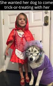 human dog costumes for halloween 539 best critter capers images on pinterest animals adorable