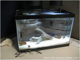 Diy Aquascape Dramatic Aquascapes Diy Aquarium Background 2 5 Gallon Desktop
