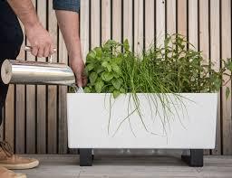 the glowpear mini self watering planter gadget flow